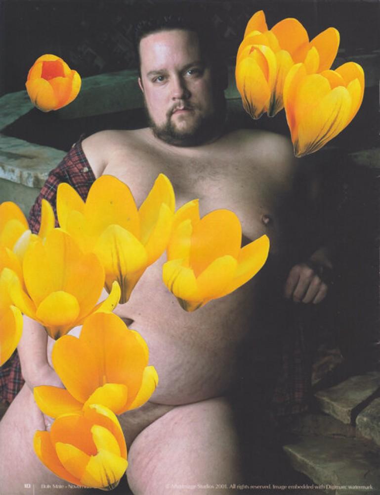 Bulk Male Flower Collage 7
