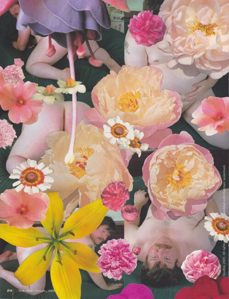 Bulk Male Flower Collage 38