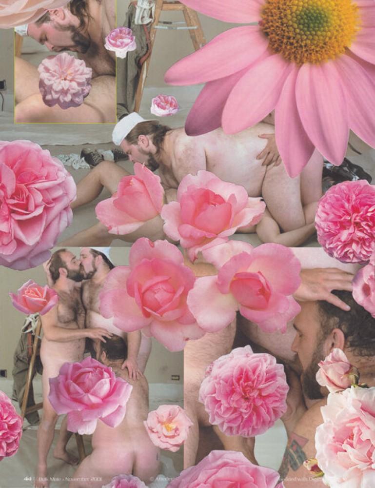Bulk Male Flower Collage 40
