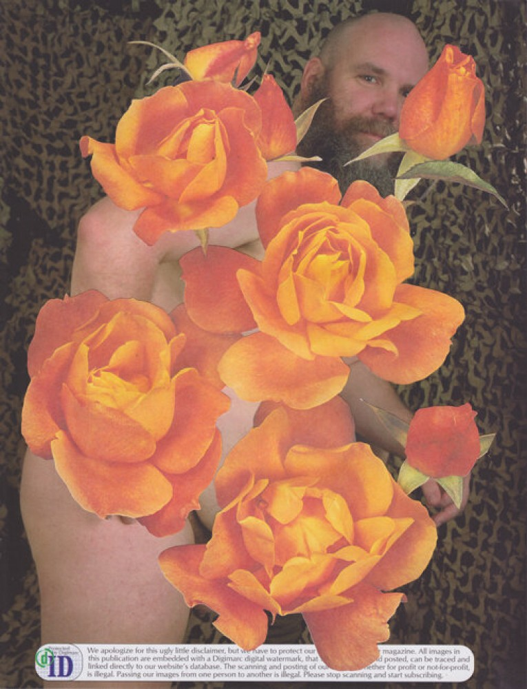 Bulk Male Flower Collage 41