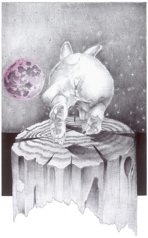 White Rabbit and Pink Moon Print
