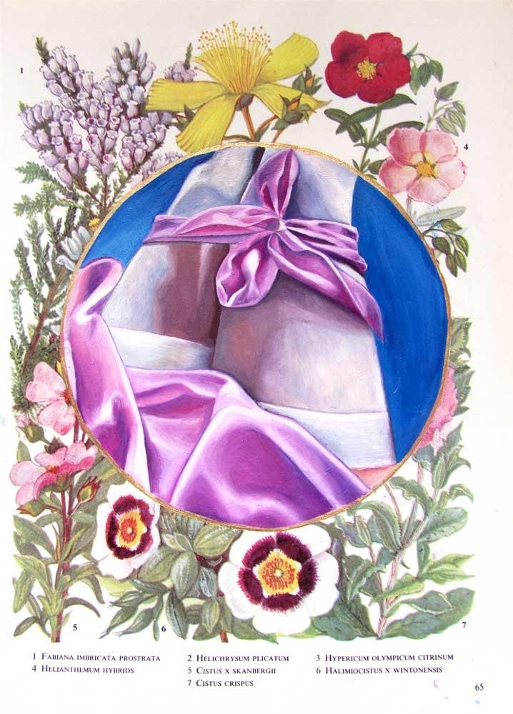 Flower Book Plate 1