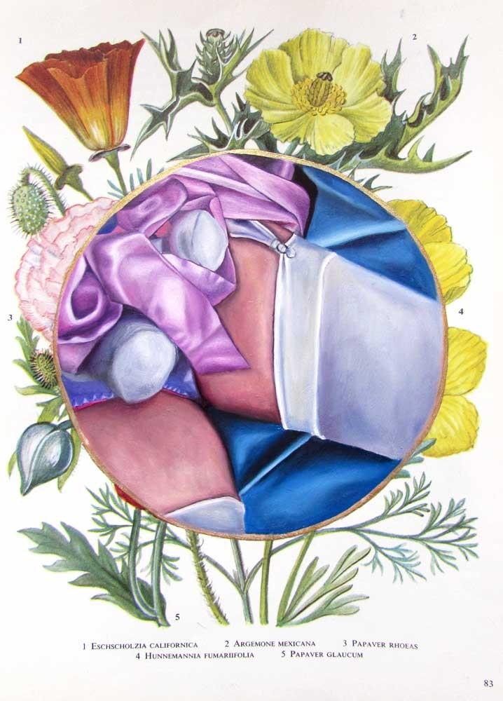Flower Book Plate 3