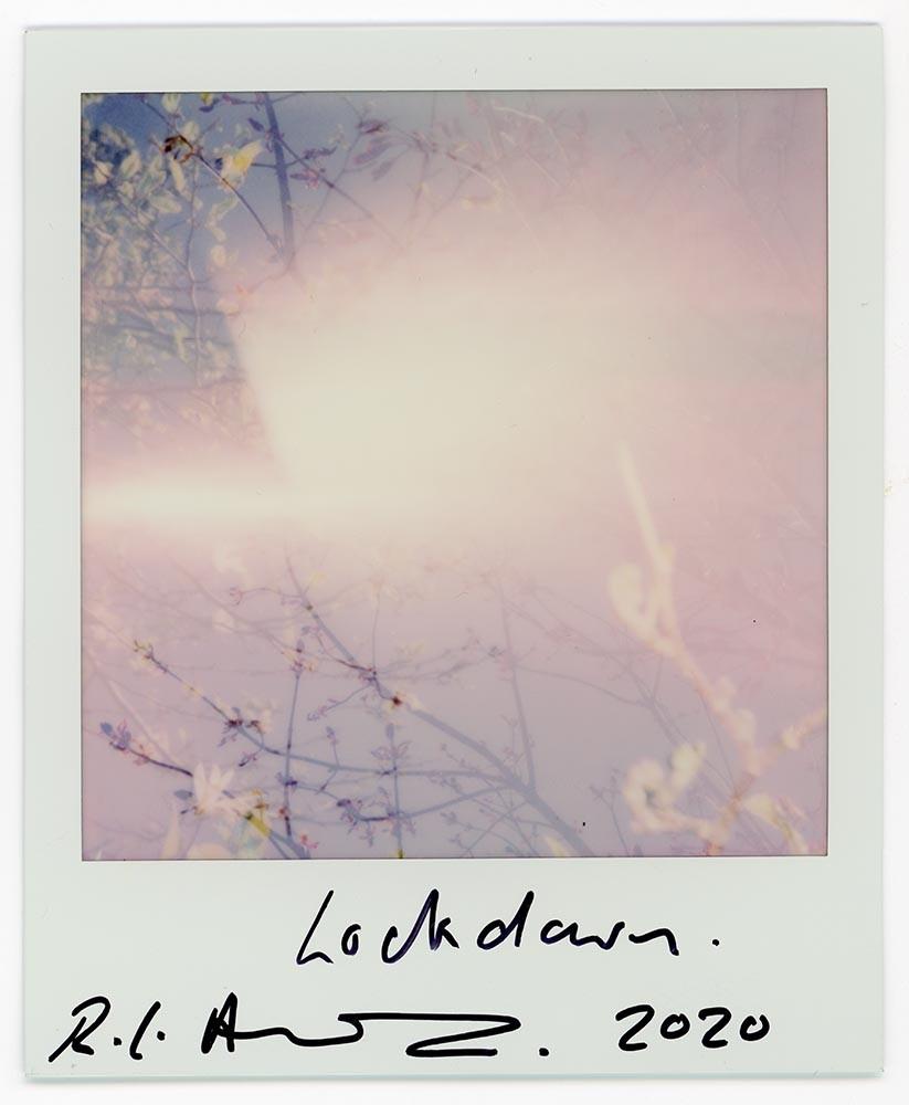 Lockdown, 2020