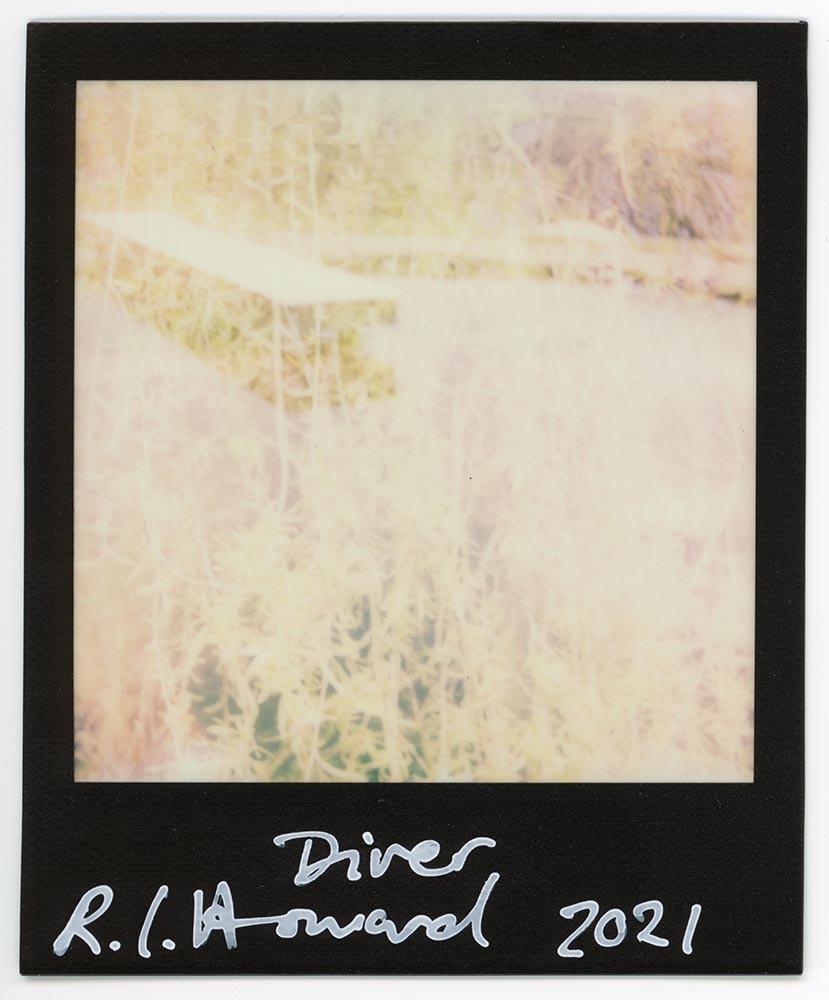 Diver, 2021