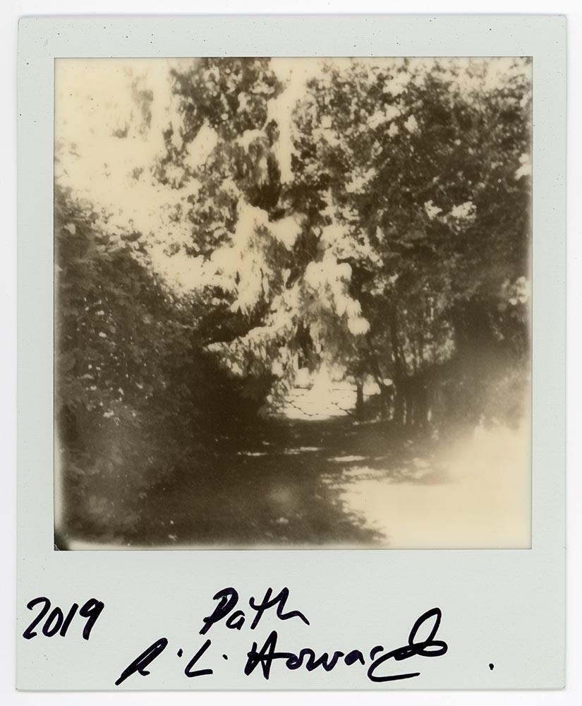 Path, 2019