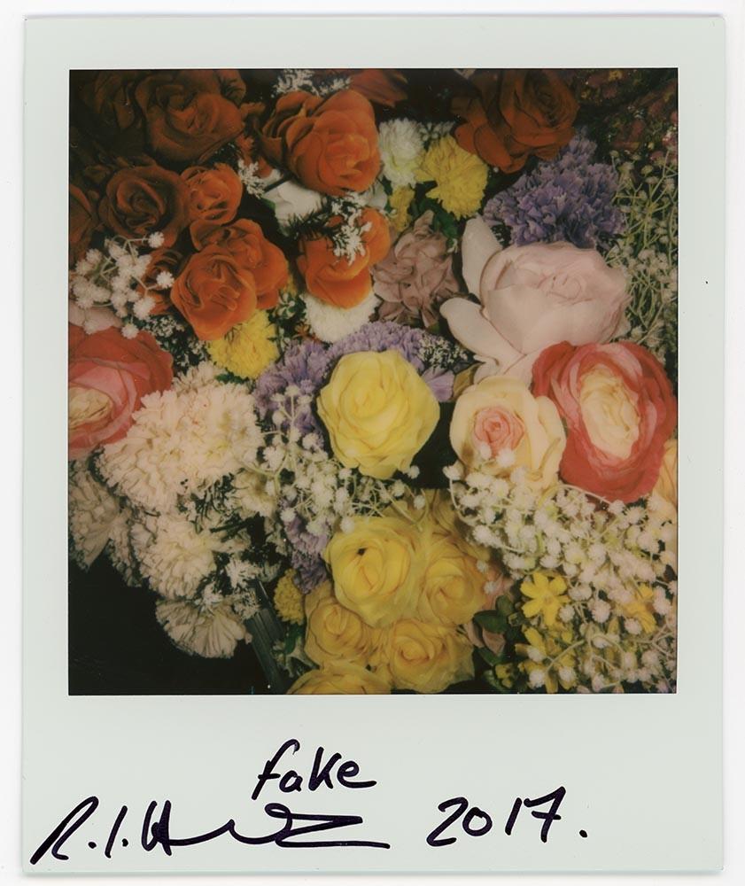 Fake, 2017