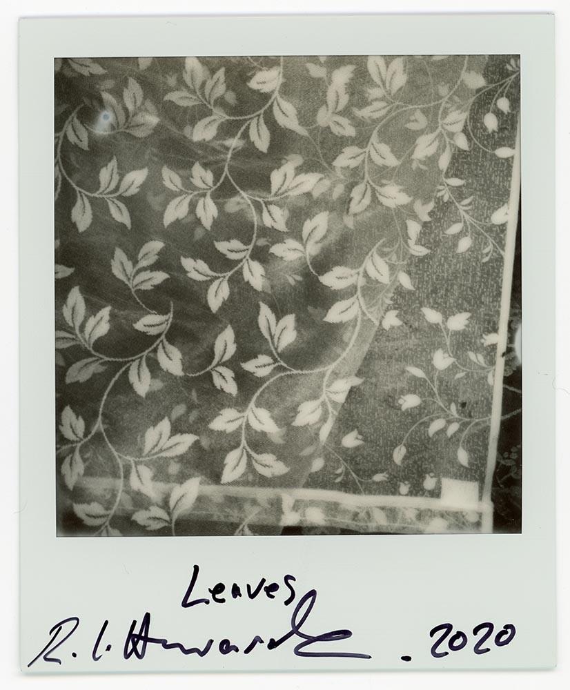 Leaves, 2020