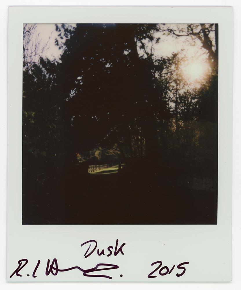 Dusk, 2015