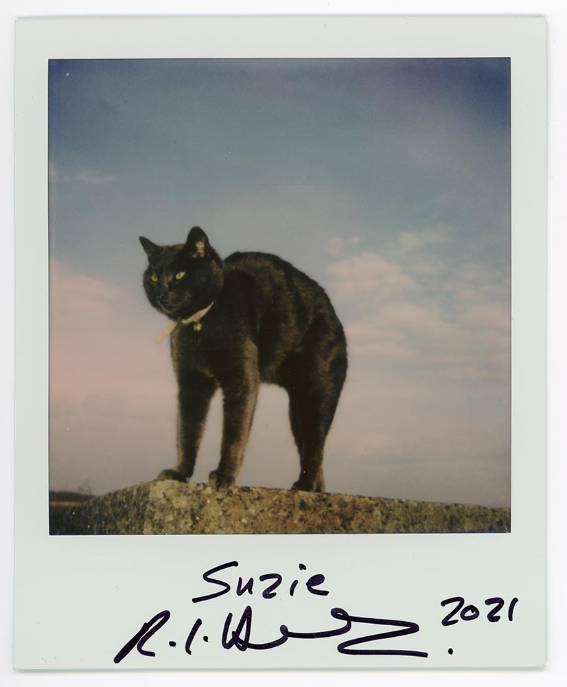 Suzie, 2021