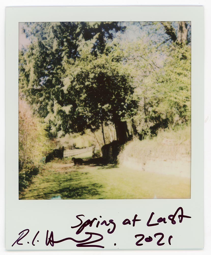 Spring at Last, 2021