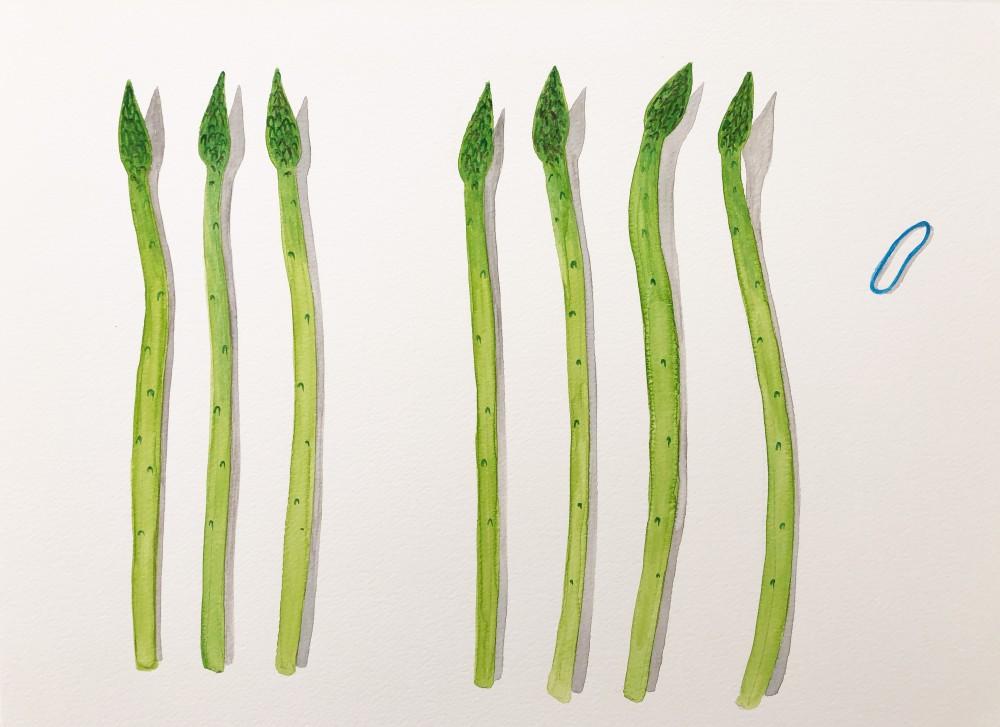 Asparagus 5
