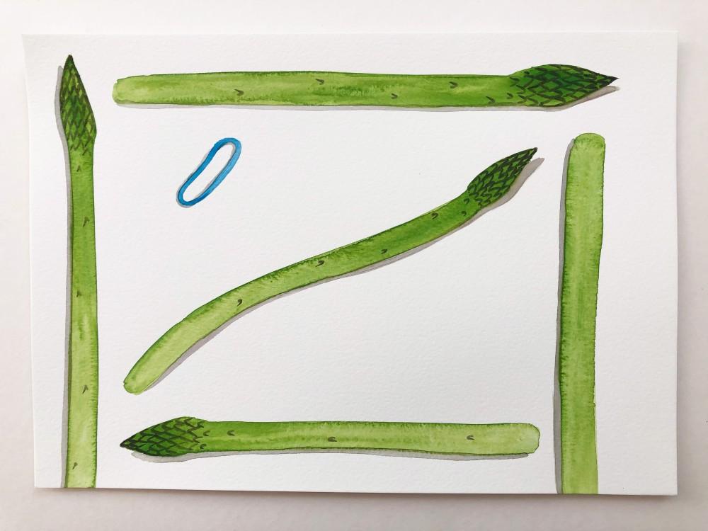 Asparagus 21