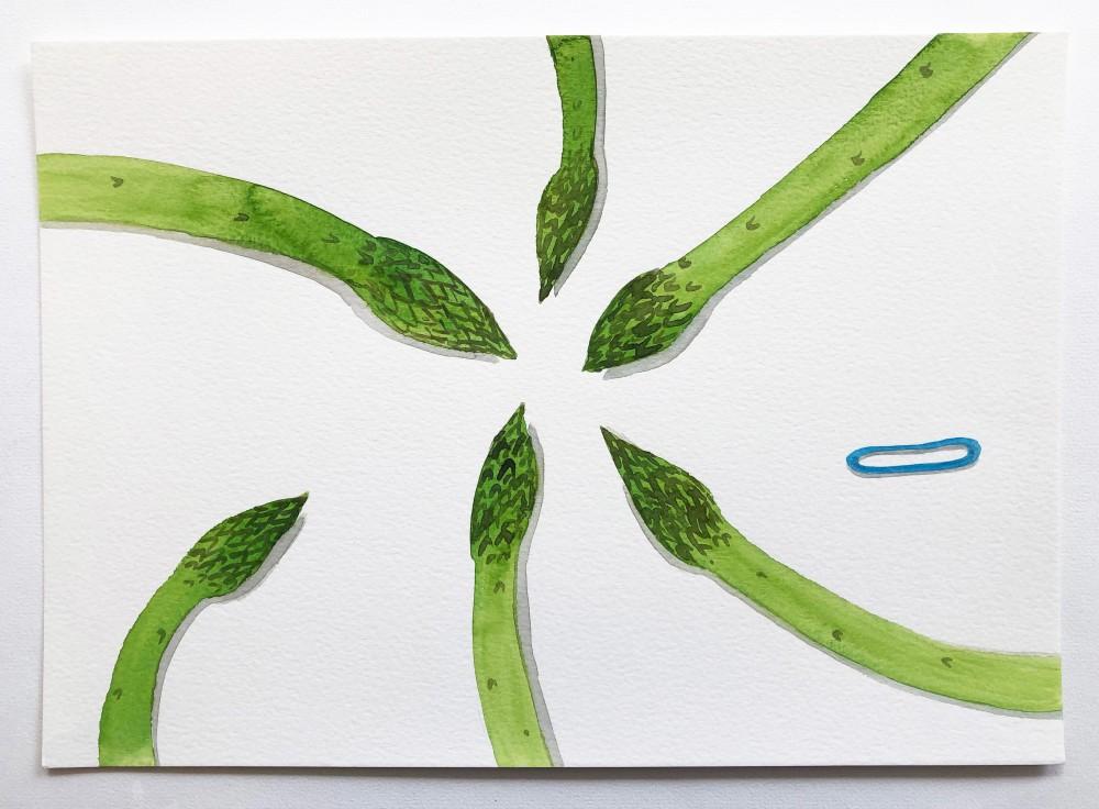 Asparagus 23