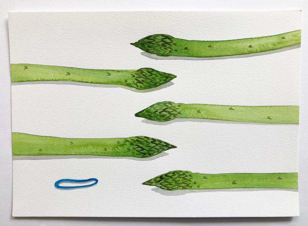 Asparagus 24