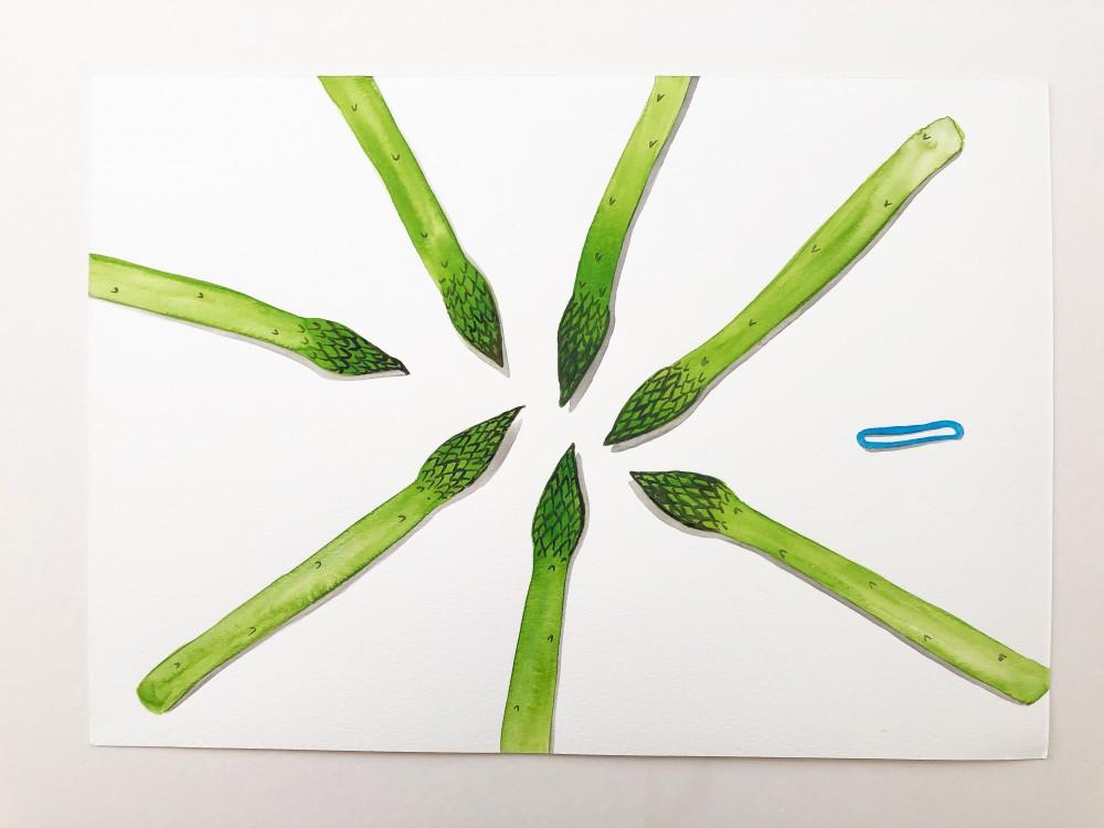 Asparagus 29