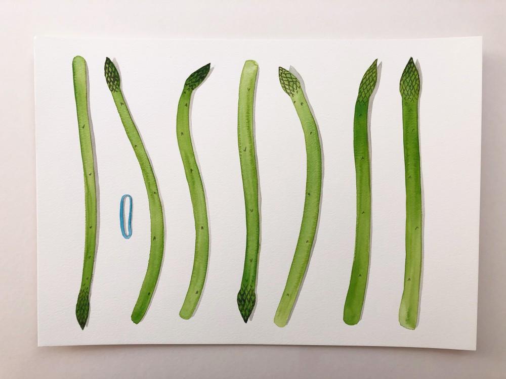 Asparagus 31