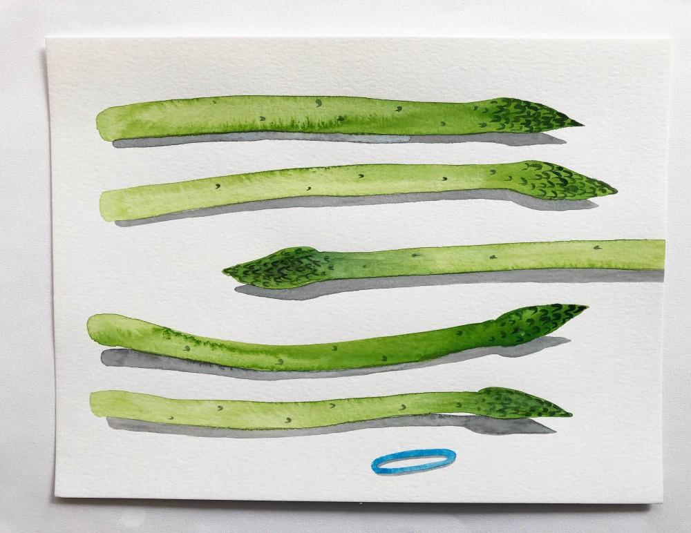 Asparagus 17