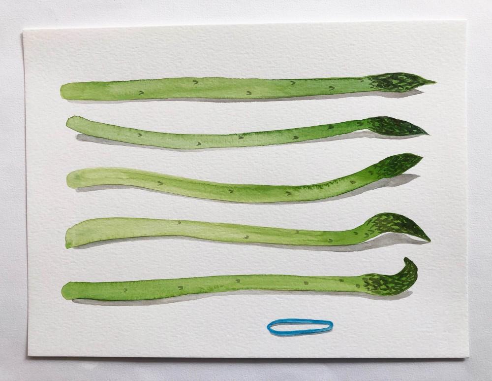Asparagus 18