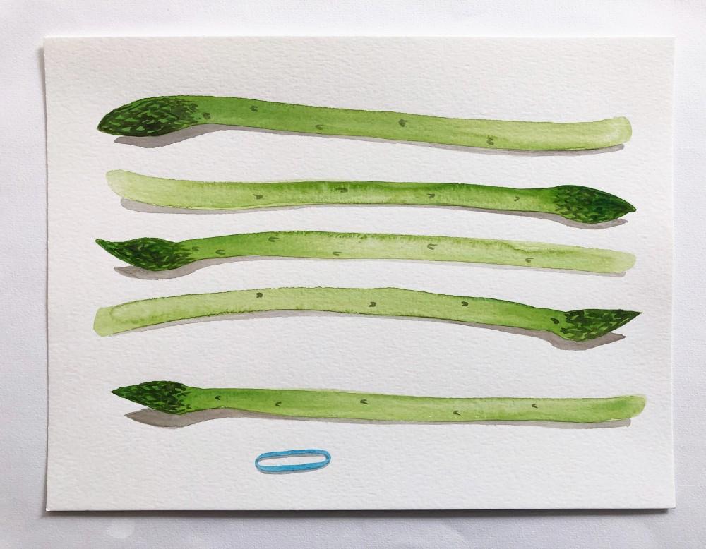 Asparagus 19