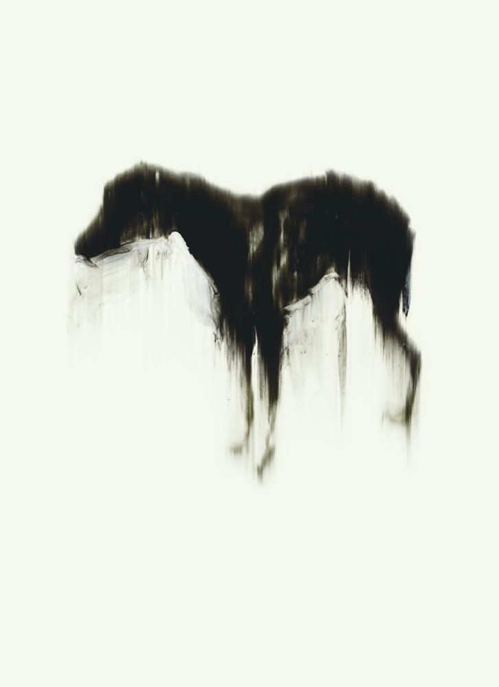 Black Dog Signed Poster