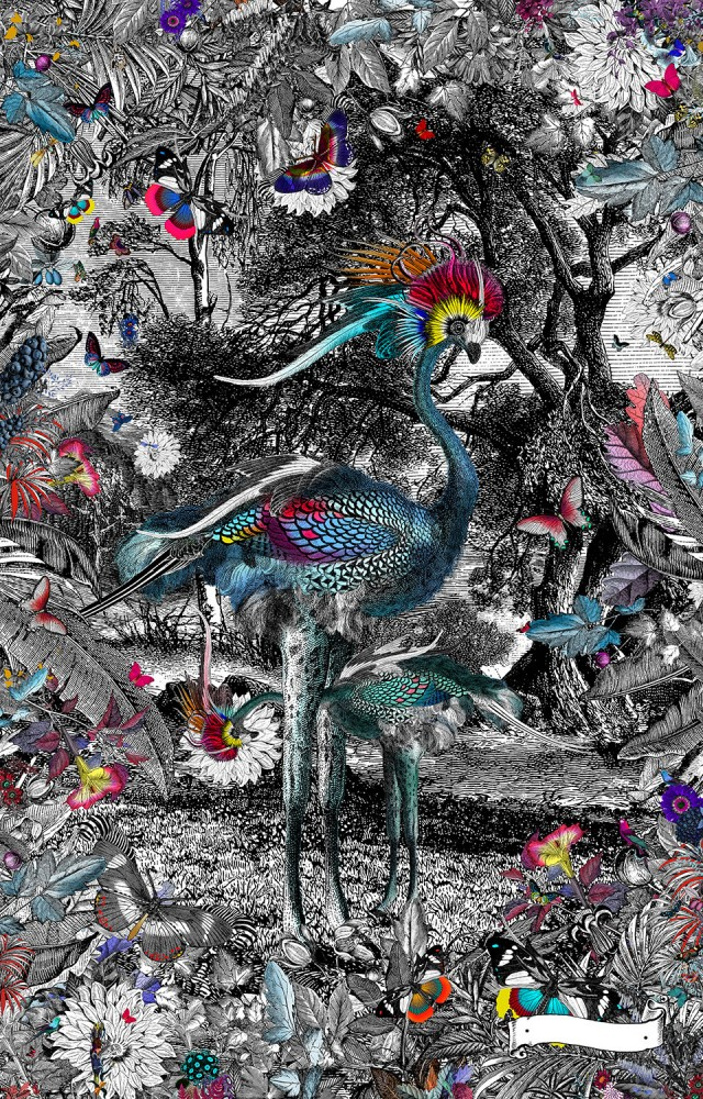Astrikur Silfradi - Art Print