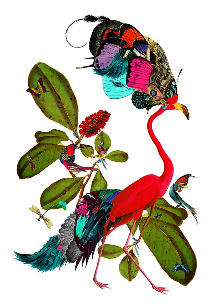 Raudbedur - Art Print