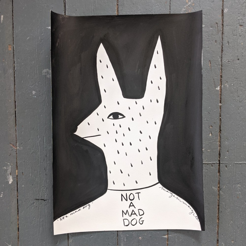 Not A Mad Dog