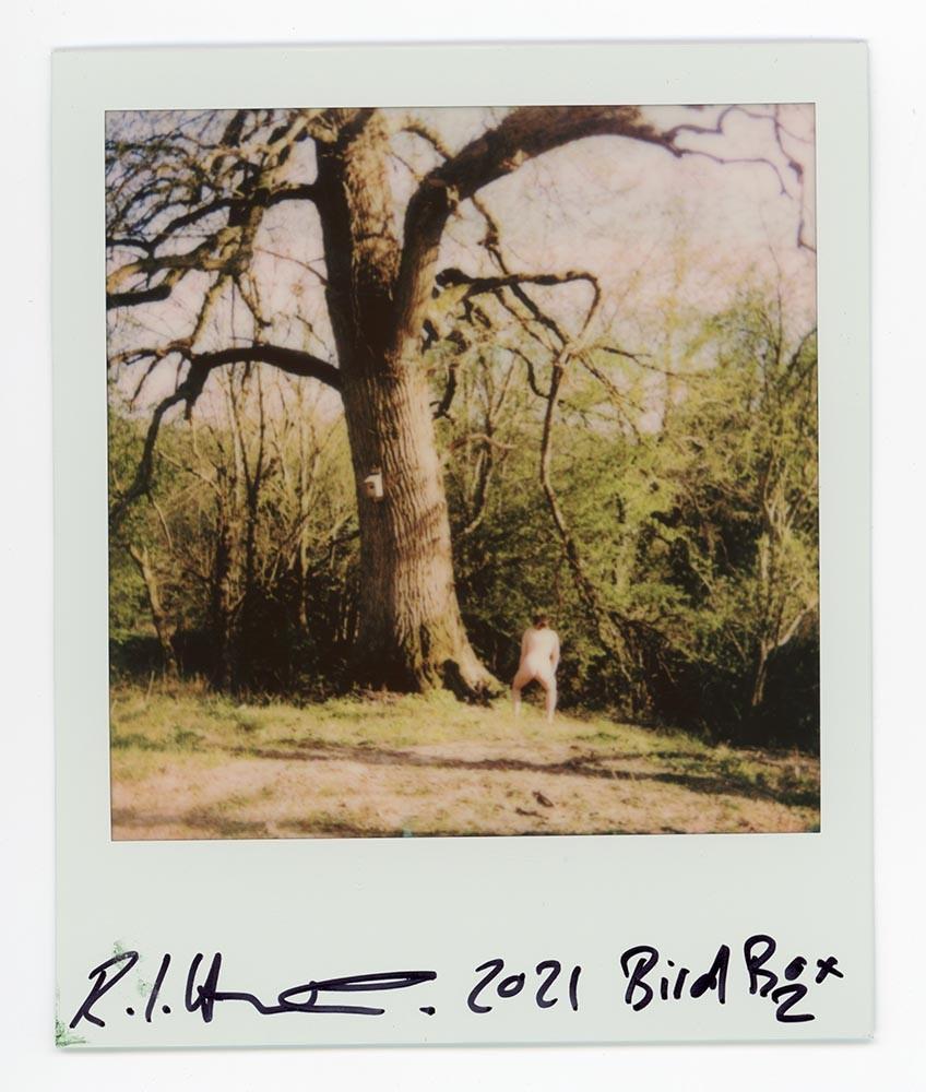 Bird Box 2, 2021