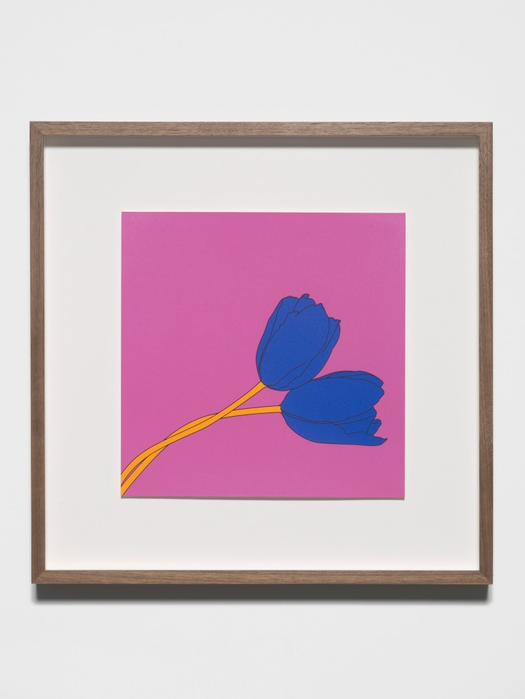 Tulips (after Mapplethorpe) - Michael Craig-Martin