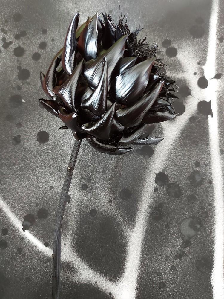 No title (Flowers for ACBF. v4)