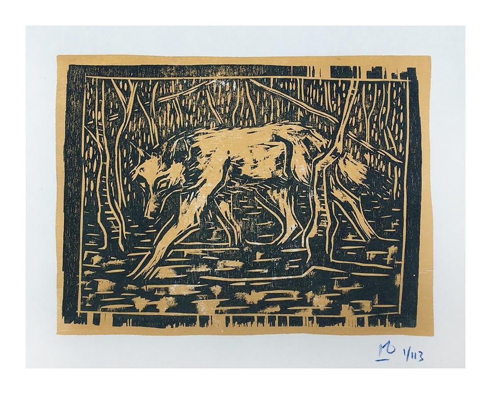 wolf in birchwood