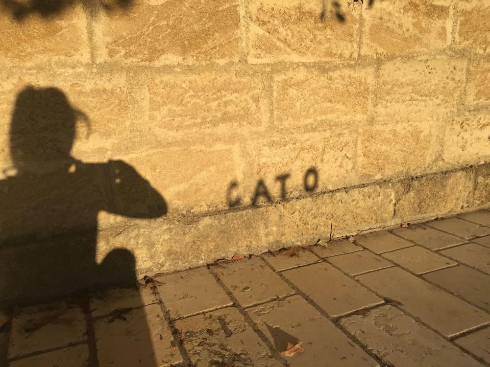 Cato Writing Torre Ruggeri 2016