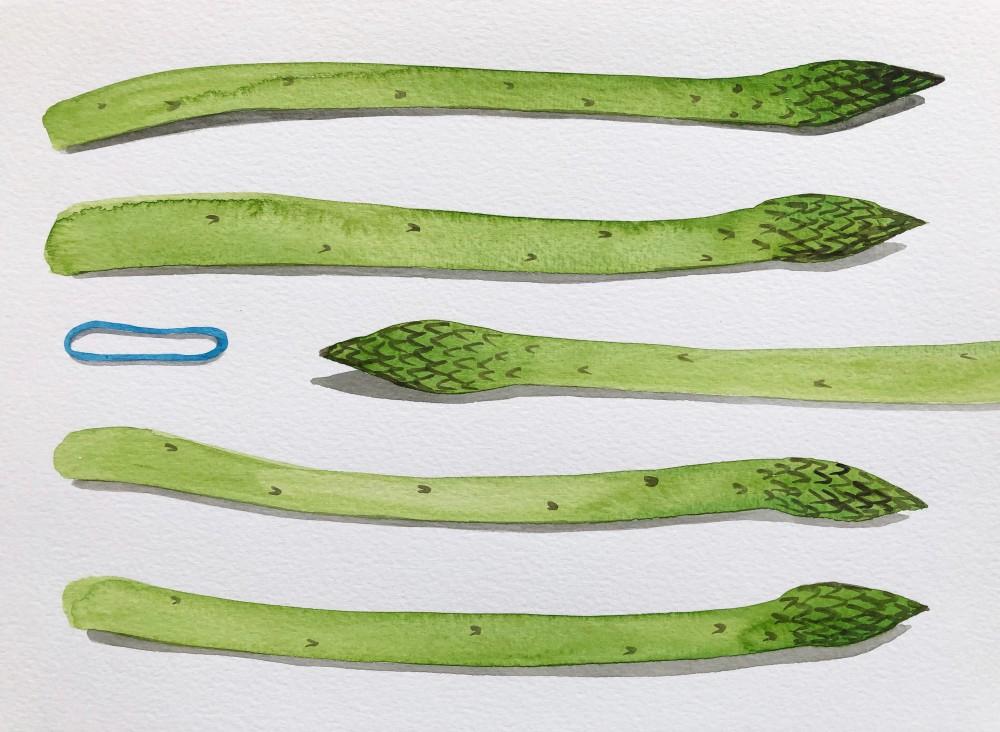 Asparagus 22