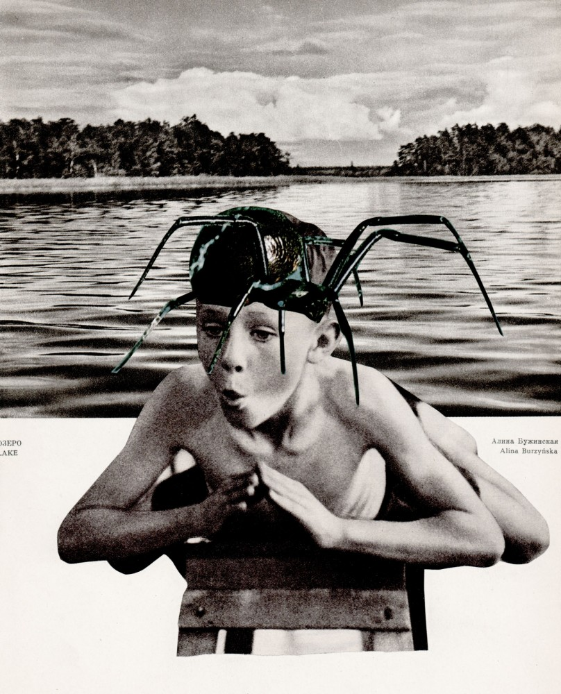 LEARNING TO SWIM LIKE A DOLOMEDES BRIANGREENEI 2021 Original Collage 23x29.5cm