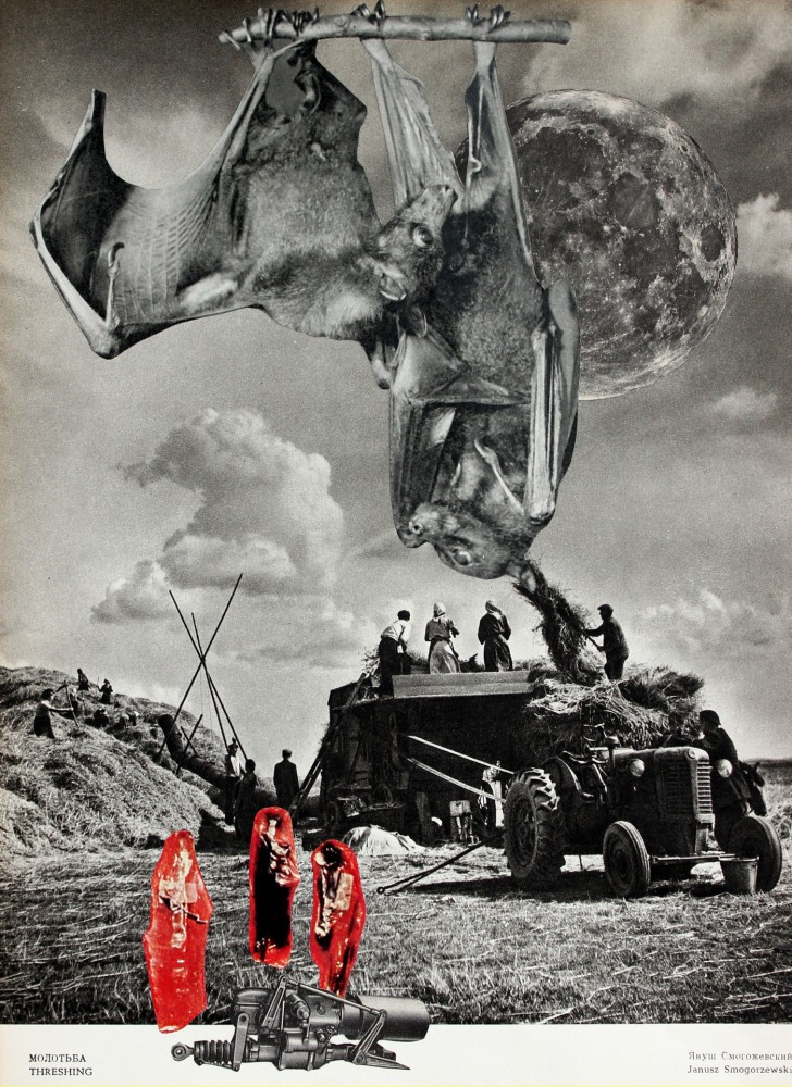THRESHING SEASON 2021 Original Collage 23.5x32cm