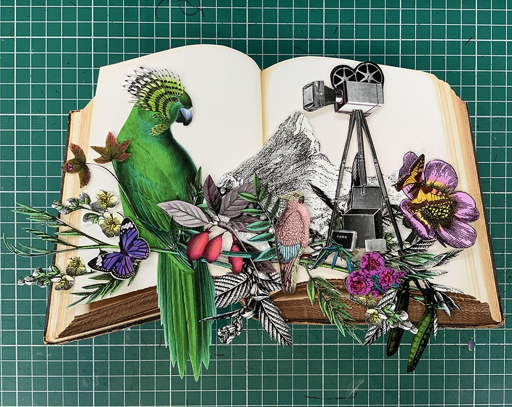 Reading The Mountains - Camera & Parrots - Mini I - Original