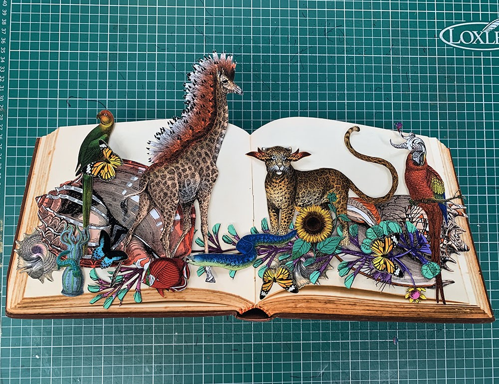 Reading The Jungle - Shells - Mini I - Original
