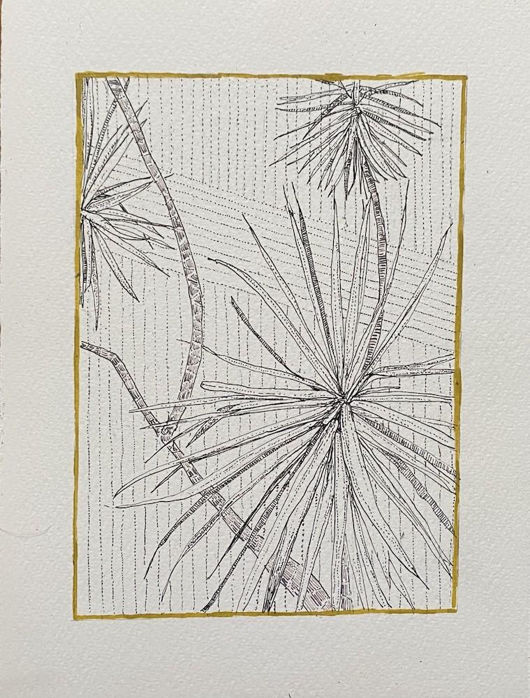 Portrait Palm Study 4