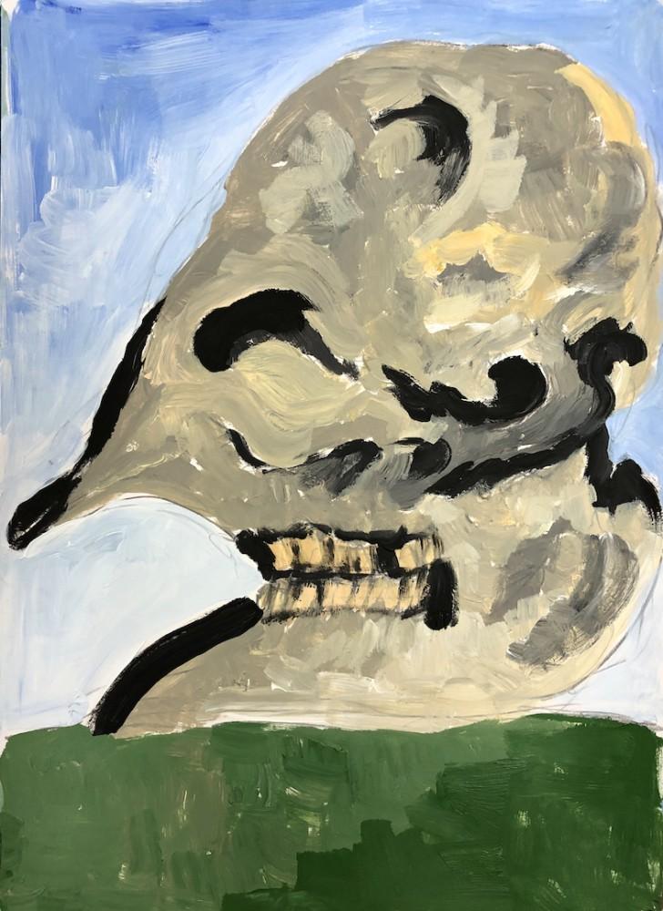 - elephant skull